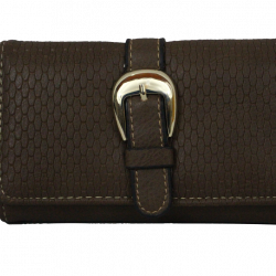 Buckle Style Ladies Purse Brown A