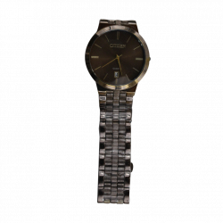 Citizen Men Watch Silver Brown