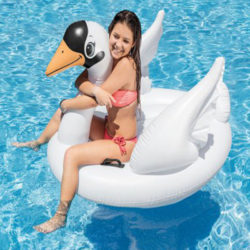 intex Swan Inflatable Ride On a